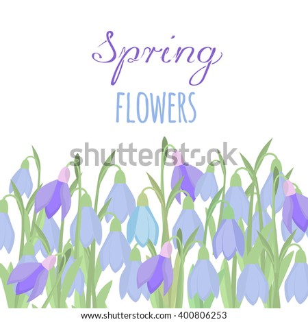 Early Spring Purple Crocus Snowdrops Nature Stock Vector Royalty
