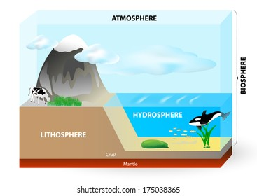 Earth consists of Lithosphere (Land), Hydrosphere (Water), Atmosphere (Air) and biosphere (all life on Earth).
