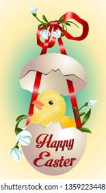 Easter card with funny newborn chicken in broken egg shell and spring flowers