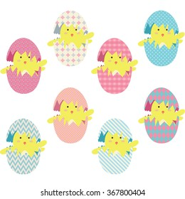 Easter Chicks Eggs Collections