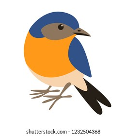 eastern bluebird,flat style, front view