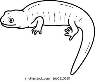 Eastern tiger salamander. Illinois State symbol. Vector outline icon.