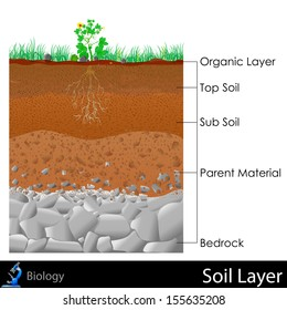 easy to edit vector illustration of diagram for Layer of Soil