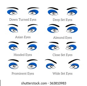Easy makeup tips for the eyes. Beauty eyelash, eyebrow and mascara, fashion eyeshadow. Easy makeup vector illustration or easy makeup tips