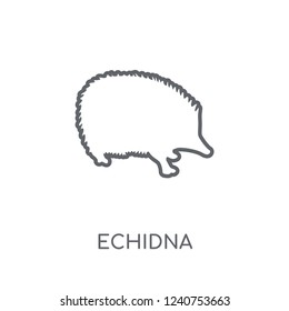 Echidna linear icon. Modern outline Echidna logo concept on white background from animals collection. Suitable for use on web apps, mobile apps and print media.