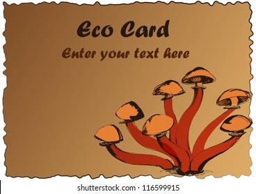 eco card mushroom