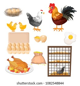 Eco farming. Rooster, chicken and eggs pattern Vector.