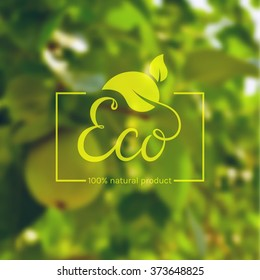 Eco product logo. Template with green leaves and hand drawn lettering on blurred background. Eco label for natural products. Vector illustration.
