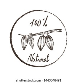 Eco products. Imprint design elements Hand drawn sketch branch with cacao beans Chalk style vector