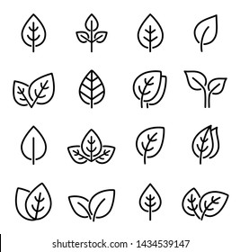 eco set of black line leaf icons on white background