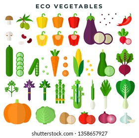 Eco vegetables, colorful flat style set. Fresh organic food. Vegetarian, dieting, healthy eating. Natural eco products. 100% organic tasty food. Vector illustration.