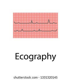 Ecography, flat vector icon.
