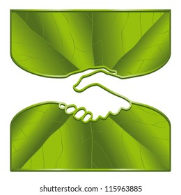 An ecological handshake with leaf surfaces.