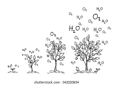 ecology green world concept.  hand drawing growing up tree on white backgrounds.  vector and illustrations.
