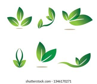 Ecology leaves go green logo illustration - Vector