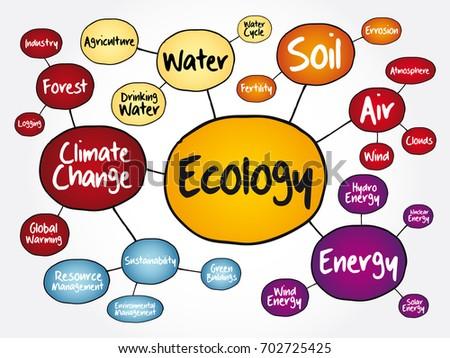 Ecology Mind Map Flowchart Concept Presentations Stock Vector