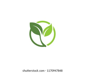 ecology nature element vector
