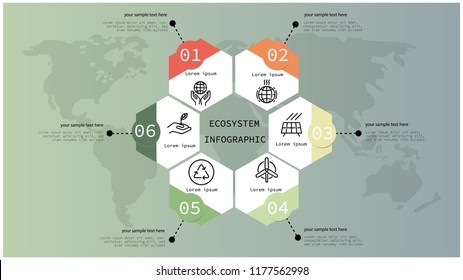 ecosystem infographic design,vector illustration