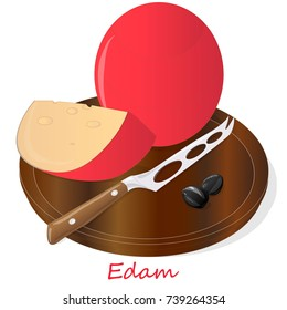 Edam cheese food collection illustration