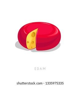 Edam cheese head. Cartoon flat style fresh diary product. Vector illustration single icon isolated on white background.