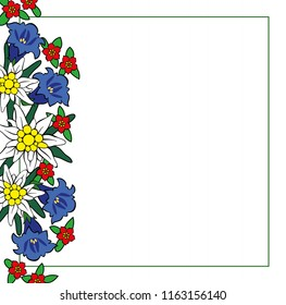 Edelweiss and alpine flowers frame