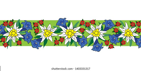 Edelweiss and alpine flowers line