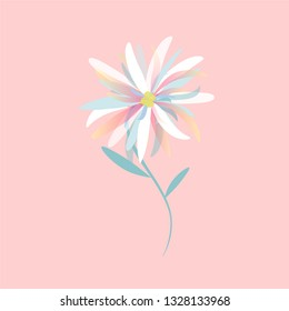 Edelweiss. Flat illustration. Element for design. Template for Website or Web Page