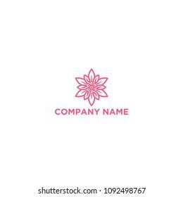 Edelweiss Flower Logo Template