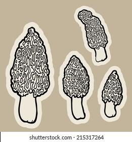 edible mushrooms morels (Morchella) cartoon vector.