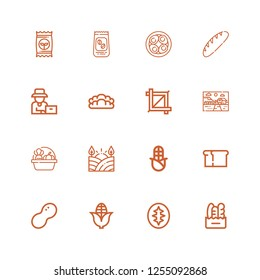 Editable 16 grain icons for web and mobile. Set of grain included icons line Bread, Sourdough, Corn, Peanut, Field, Harvest, Farm, Crop, Farmer, Soy eggs, Coffee beans on white background