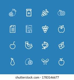 Editable 16 vitamin icons for web and mobile. Set of vitamin included icons line Apple, Pill, Kiwi, Pear, Blueberry, Medicine, Bananas, Coconut, Grape, Recipe book on blue background