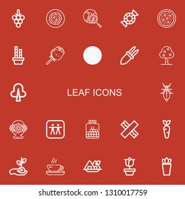 Editable 22 leaf icons for web and mobile. Set of leaf included icons line Grapes, Vegan food, Green earth, Peppermint, Salad, Bamboo, Rose, Leaf, Corn, Fruit tree on red background