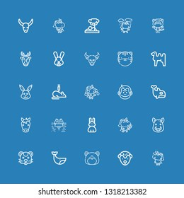 Editable 25 mammal icons for web and mobile. Set of mammal included icons line Unicorn, Hedgehog, Hamster, Whale, Boar, Rabbit, Hippopotamus, Horse, Orca, Monkey on blue background