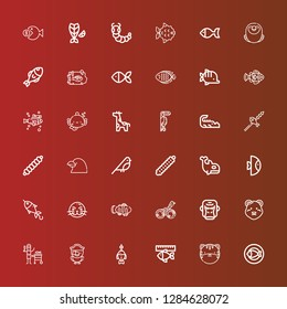Editable 36 fauna icons for web and mobile. Set of fauna included icons line Fish, Tiger, Parrot, Polar bear, Gorilla, Bird, Clown fish, Sea lion, Orca, Caterpillar, Raven on red