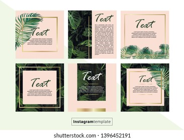 Editable background design template on palm style with gold elements