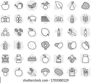 Editable thin line isolated vector icon set - flower, apple vector, spikelets, leafs, greenhouse, recycle, vegetable oil, flour, eggs, potato, beans, coffee seeds, field, mushroom, harvest, corn