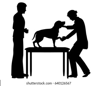 Editable vector silhouette of a female vet examining a pet dog with figures as separate objects