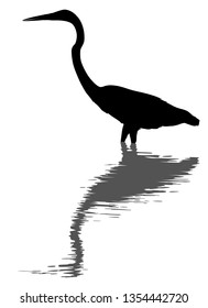 Editable vector silhouette of a great egret standing in deep water with its reflection