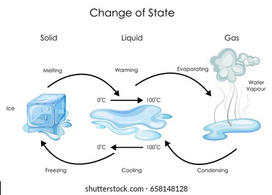 Education Chart of Biology for Change of State for Water Diagram. Vector illustration