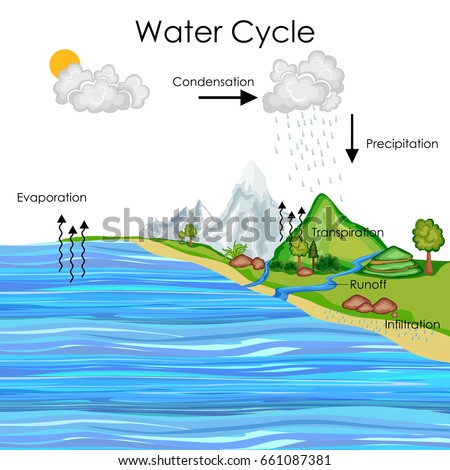 Water Cycle Landscape Diagram Car Wiring Diagrams Explained