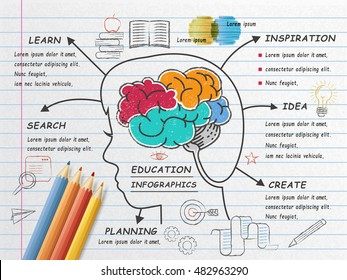 Education infographic design, human brain doodles on notepaper, realistic colored pencils on it