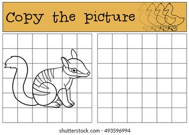 Educational game: Copy the picture. Little cute baby numbat sits and smiles.