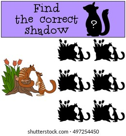 Educational game: Find the correct shadow. Two little cute numbats look at each other and smile.