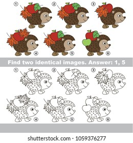 The educational kid matching game for preschool kids with easy gaming level, the task is to find similar objects, to compare items and find two same Autumn Hedgehogs