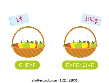 Educational word card with fruits vector template. Flash card for english language. Opposites concept, cheap and expensive. Food basket with low and high price tags flat illustration with typography