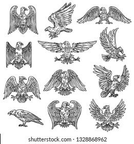 Eeagles herladic sketch icons. Vector gothic heraldry bird design, coat of arms and royal shield symbol or tattoo eagle fly with spread wings and claws