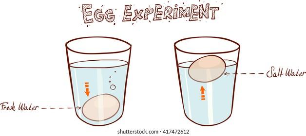 Egg floating in glass of water (sink or float egg freshness test)