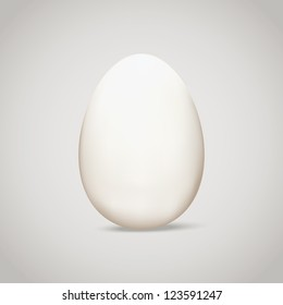 Egg. Vector illustration