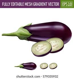 Eggplant on white background. Vector illustration