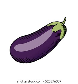 eggplant vector scetch